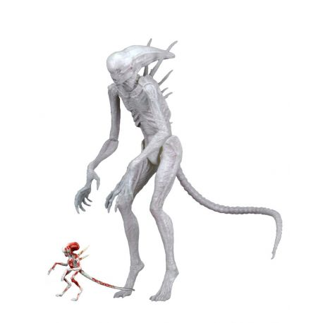 Alien Covenant figurine Neomorph Neca
