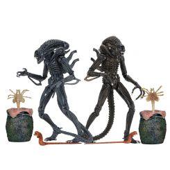 Aliens assortiment figurines Ultimate Warrior Neca