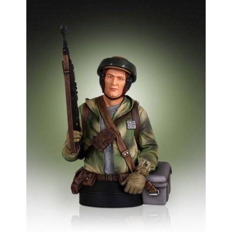 Star Wars buste 1/6 Endor Trooper Gentle Giant