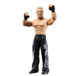 WWE Classic Superstars série 14 Diamond Dallas Page 18 cm
